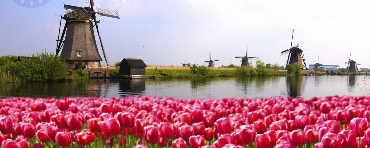 giấy phép lao động cho người Hà Lan