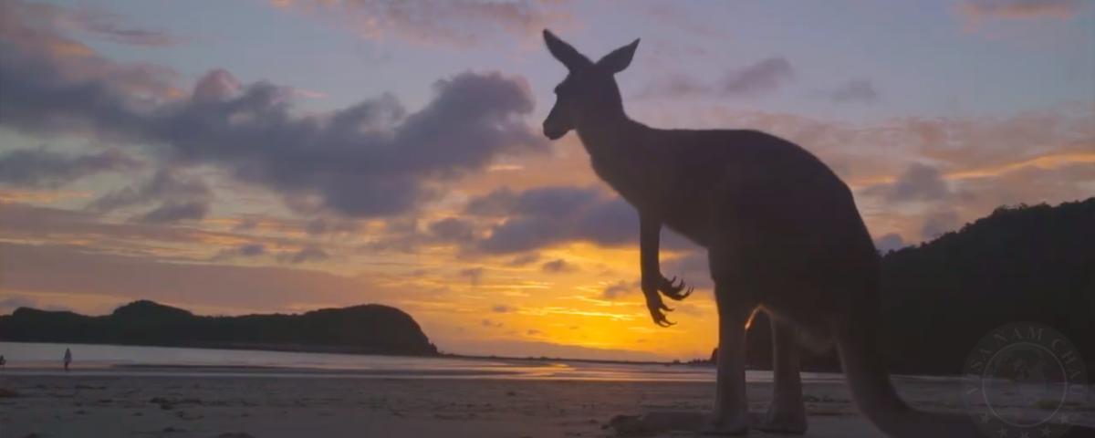 Du lịch thiên nhiên Úc